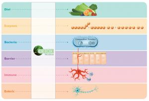 Metagenics Detox 2C