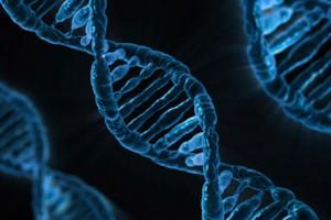 genes-weight-control