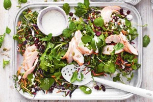 festive-smoked-chicken-salad_1980x1320-142089-1